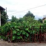как купить дом в Болгарии