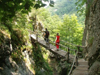 горы Болгарии-пеший туризм в Болгарии-горный туризм в Болгарии