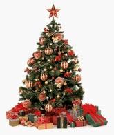 новогодняя елка-рождество-новый год-Болгария-отдых в Болгарии