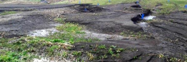 Огород после наводнения