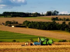 инвестиции в сельскохозяйственные земли в Болгарии