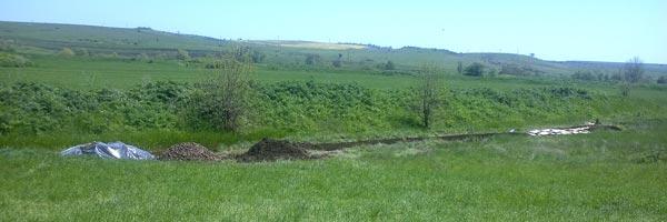 пермакультурный огород