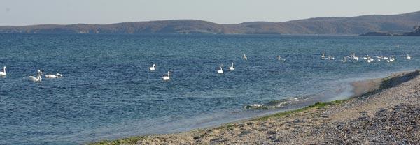 Пляж Дюни